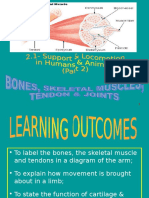 2.1 (b) - Role of Muscles_ Ligaments & Tendons In