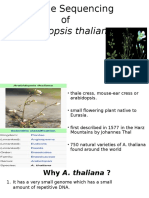 Arabidopsis sequencing final ppt.pptx