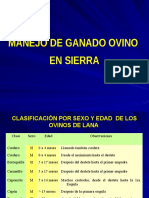 Ovinos_manejo Ganado Ovino en Sierra