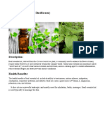 final matter of essential oil.docx
