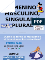 Femenino, Masculino, Singular y Plural