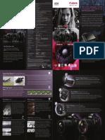 5D Leaflet