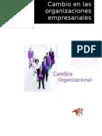 Cambios en Las Organizaciones Empresariales_ericka
