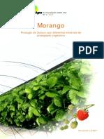 Morango Producao de Outono Com Diferentes Materiais de Propagaçao Vegetativa