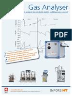Flyer Gas Analyser (en)