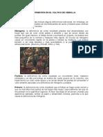Deficiencia de Nutrientes en El Cultivo de Cebolla