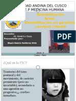Rehabilitación en PCI