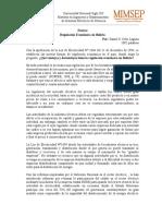 Ensayo de Regulación Económica.doc