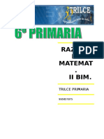 R.M. II BIM.doc
