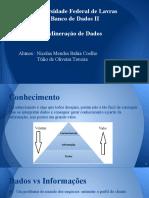 Mineração de Dados (1)