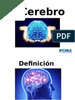 Power Cerebro 2