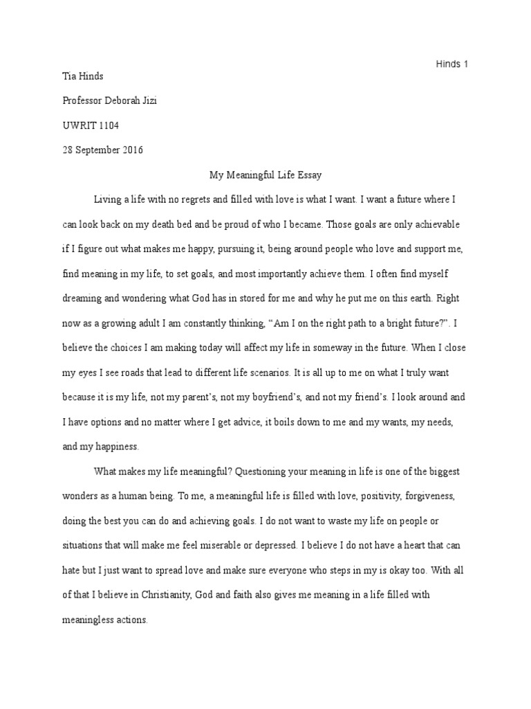What is meaning of life essay