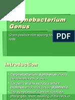 Corynebacterium Listeria enlg.ppt