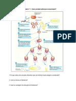 Ficha Trabalho de Biotecnologia