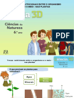 plantas-130522094037-phpapp01.ppt