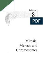 lab08mitosisandmeiosis