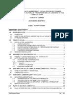 Resumen Ejecutivo Eia Tranporte Del Gas Natural en Lima