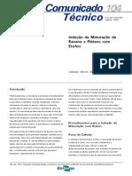 etileno.pdf