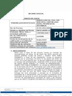 informe percial 21331-2016-00009