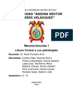 NEUROCIENCIA LOBULO FRONTAL.docx