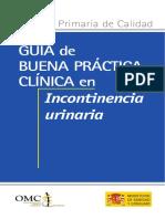 Guia Incontinencia Urinaria MSC 2007.pdf