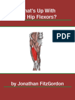 What s Up With My Hip Flexors eBook