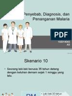 Sken 10 B12