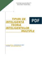 Proiect Psihopedagogie Seminar , Teoria Inteligentelor Multiple