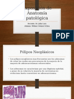 Anatomía Patológica- Colon