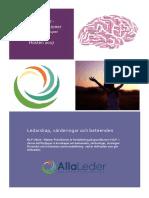 NLP Vidare - Master Practitioner 2017.pdf