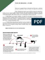 Dengue Tópicos de Biologia