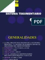 Piel Sistema Biologico 3er Parcial