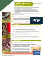 Amphibian Reptile Poster Sp