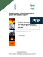 Dossier N2 Synthèse Version Française