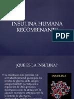 Insulina Humana Recombinante