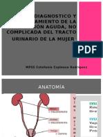 infección de vias urinarias