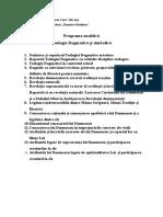 Programa Analitică