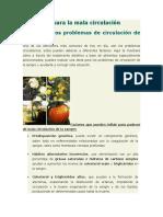 Alimentos Para La Mala Circulación