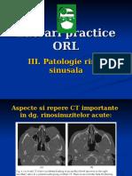 Lp Rinologie III