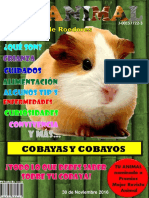 Revista.digital