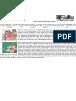 History of NWFP-Khyber Pukhtoonkhawa