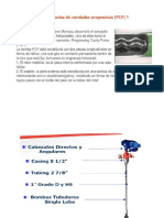 PCP Presentación (1)