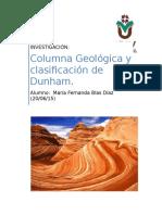 Columna Geológica Investigación
