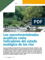 Dialnet-LosMacroinvertebradosAcuaticosComoIndicadoresDelEs-4015812 (4).pdf