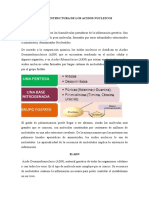 Acidos Nucleicos- Julio Pereira