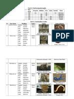 Hasil Pengamatan Annelida Fix