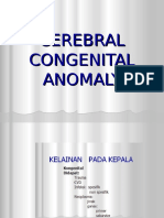 3 kelainan kongenital