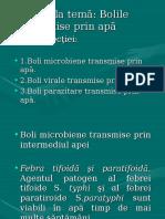 Bolile Apei