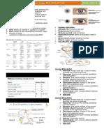 medlec neurobrainstemreflexMAR9,2015