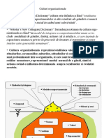 Culturi Organizationale PDF 6